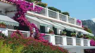 Hotel Bellevue Suites