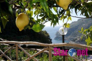 Costa Di Amalfi I Limoni Da Limoncello
