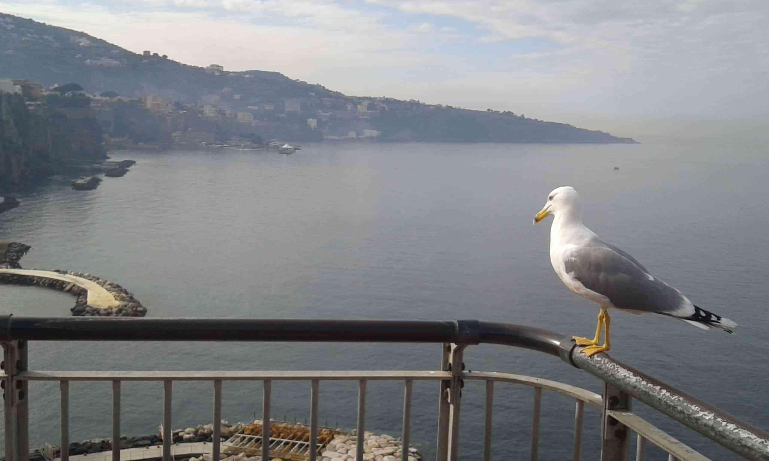 Punta Campanella – Costiera Amalfitana