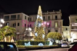 Amalfi Piazza Flavio Gioia L'albero