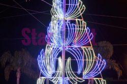 Cetara Il Grande Albero Di Natale