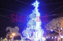 Cetara L'albero Luminoso