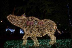 La Villa Comunale, il rinoceronte