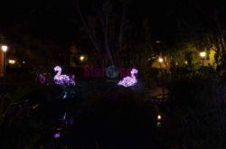 La Villa Comunale, i fenicotteri nella grande fontana