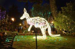 La Villa Comunale, il canguro