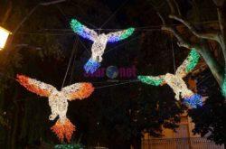 La Villa Comunale, i pappagalli