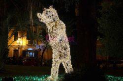 La Villa Comunale, l'orso