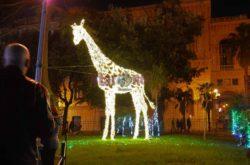 La Villa Comunale, la giraffa
