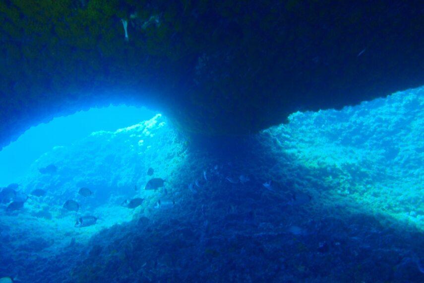 Diving center Nettuno -immarsione in grotta